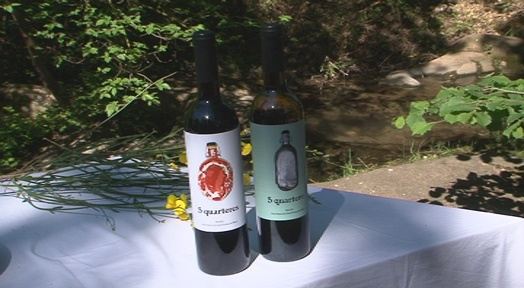 Veu la llum el vi '5 quarteres' de les vinyes ecològiques de la Vall d'Horta
