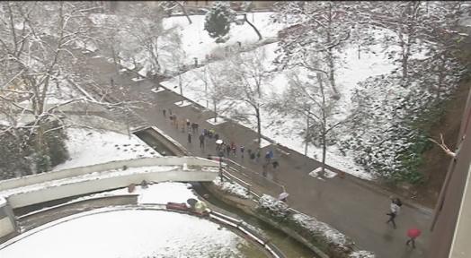 La nevada no sorprèn ningú però fa disminuir el trànsit i l'activitat